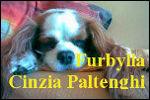 Furbylla o Cinzia Paltenghi