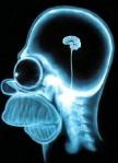 Inside Homers Brain