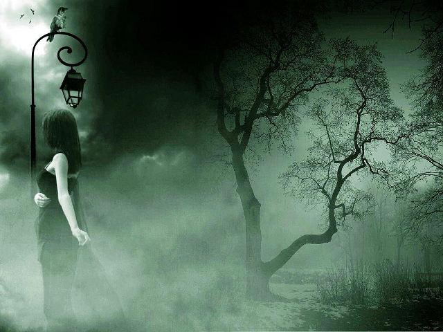 in_the_dark_forest