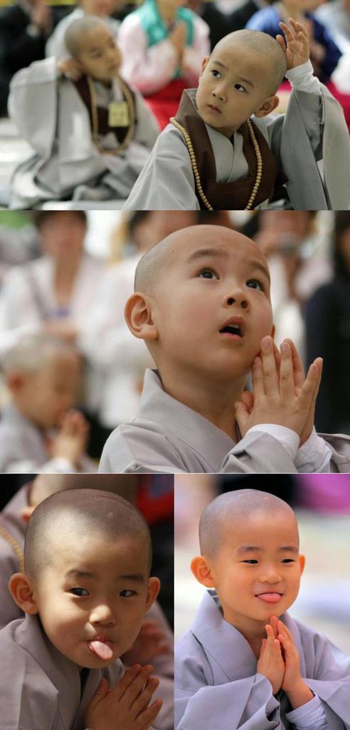 piccoli buddhisti