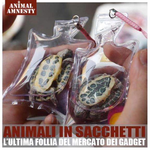 animali in sacchetti