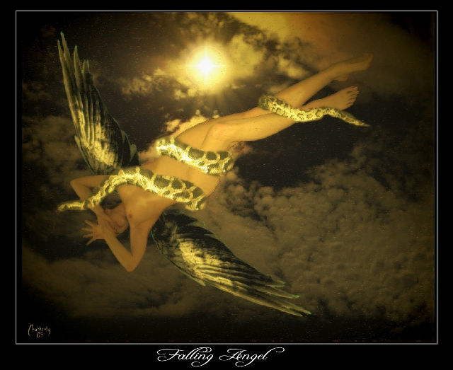 Falling Angel by Chatterly