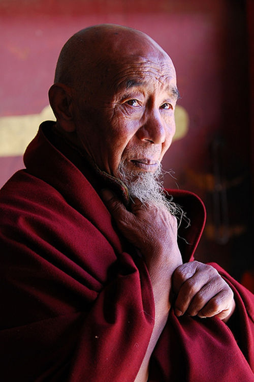 vecchio monaco buddista