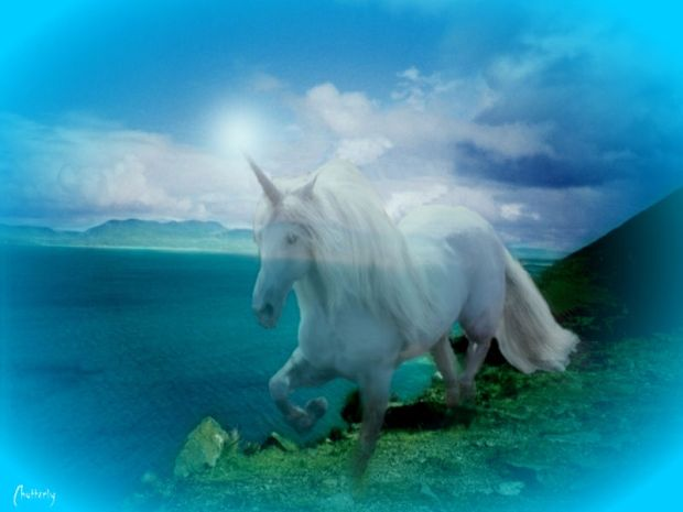 Mistical Unicorn by Chatterly