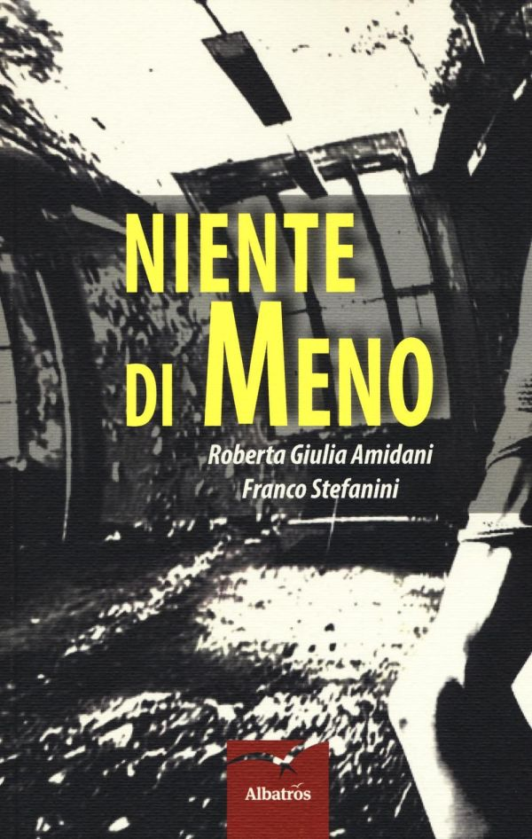 Niente di meno - Roberta Giulia Amidani - Franco Stefanini