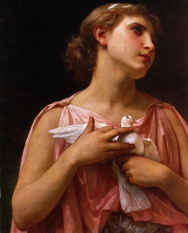 The Dove Fanciers - Elizabeth Jane Gardner