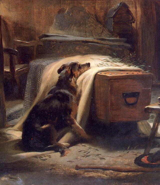 cassa da morto con cane